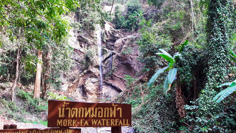mork fa waterfall, mokfa waterfall, chiang mai attractions