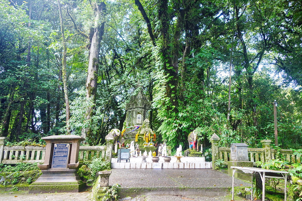 doi inthanon national park, inhanon, doi inthanon, inthanon national park