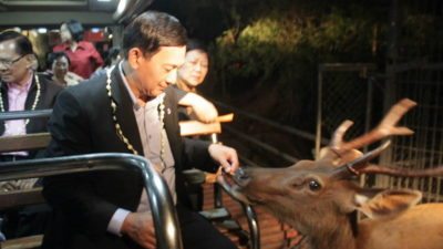 chiang mai night safari, chiangmai night safari, chiang mai night zoo, chiang mai attractions