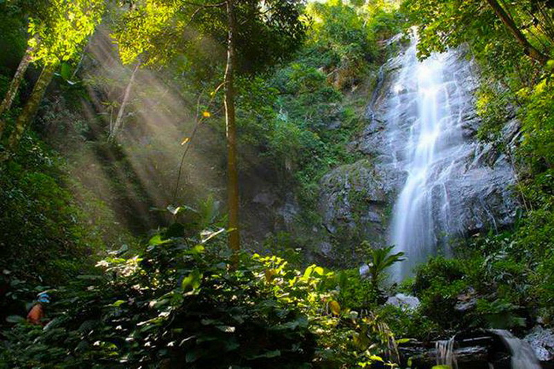 sri lanna national park, si lanna national park, srilanna national park, national parks in chiang mai