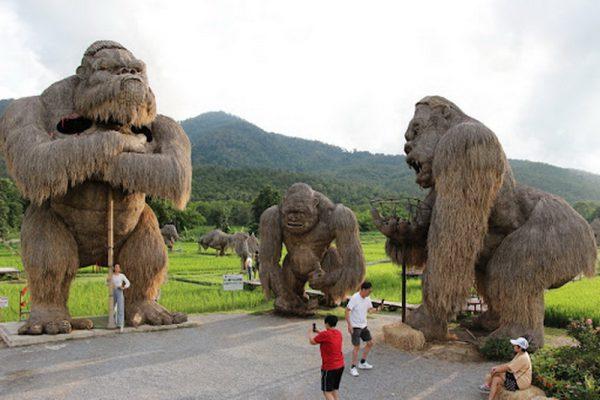 huay tung tao, chiang mai attractions